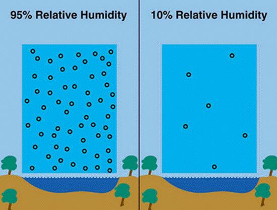 Hình minh họa độ ẩm không khí