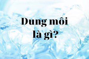 Dung môi là gì